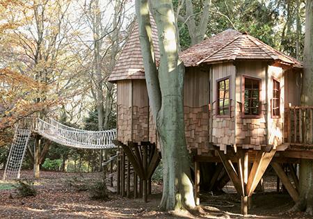şirin ağaç ev