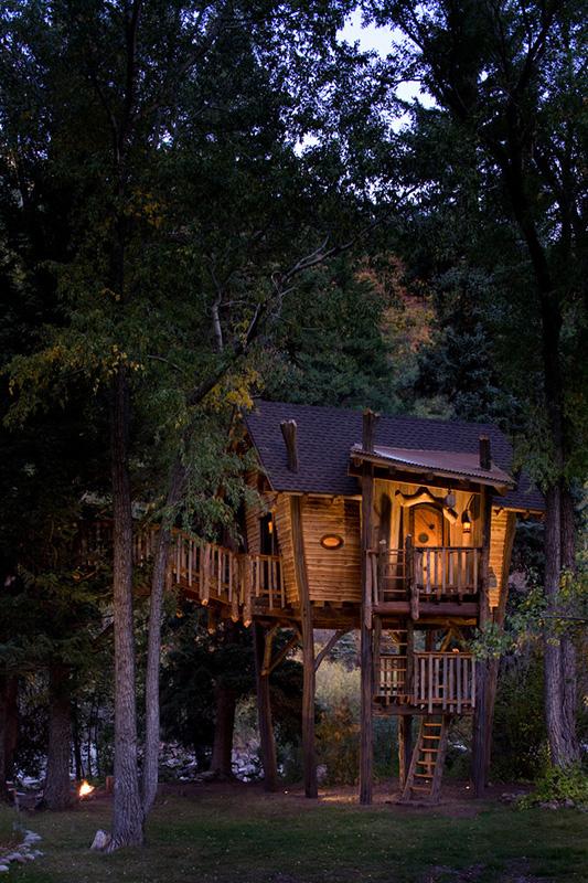 ağaç ev gece manzarası