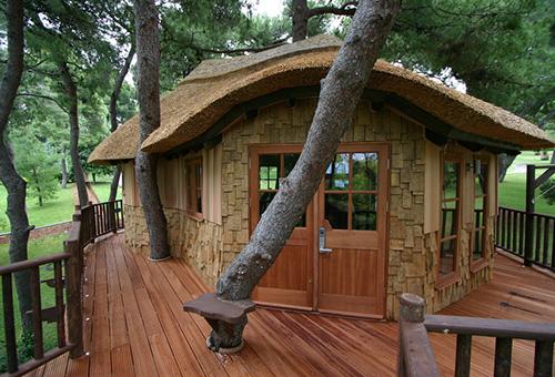 doğal ağaç ev