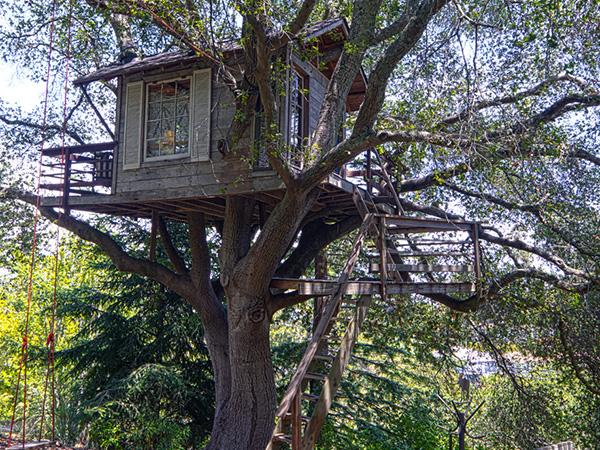 güzel ağaç ev