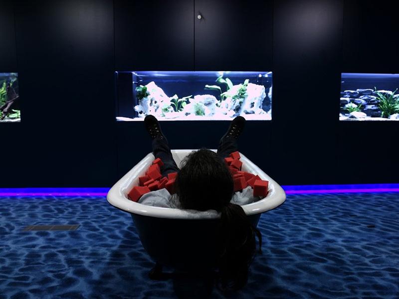 google zürich aquarium