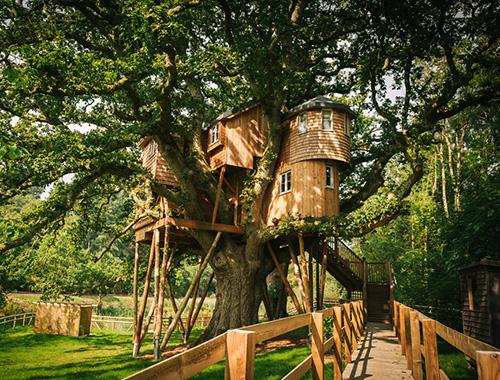 mükemmel ağaç ev