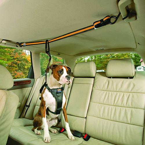 Köpek araba askılıkları