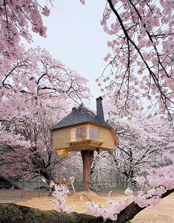 İlginç Japon evi