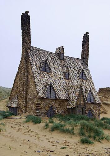 Deniz kabuklu ev