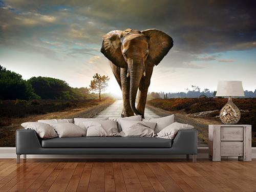 Dev fil duvar kağıdı