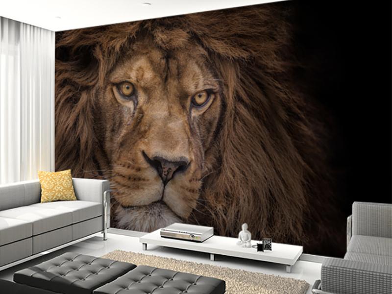 Eviniz için aslan duvar kağıdı