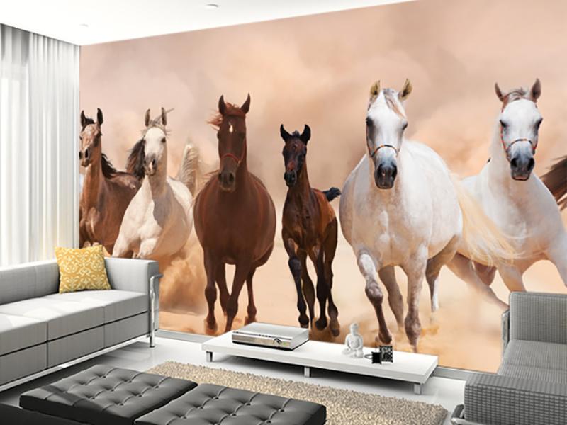 Eviniz için at duvar kağıdı