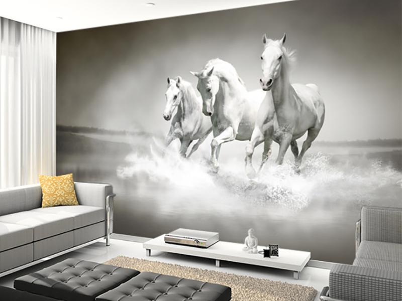 Eviniz için beyaz at duvar kağıtları