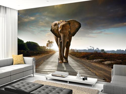 Eviniz için dev fil duvar kağıdı