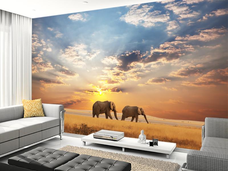 Eviniz için fil duvar kağıdı