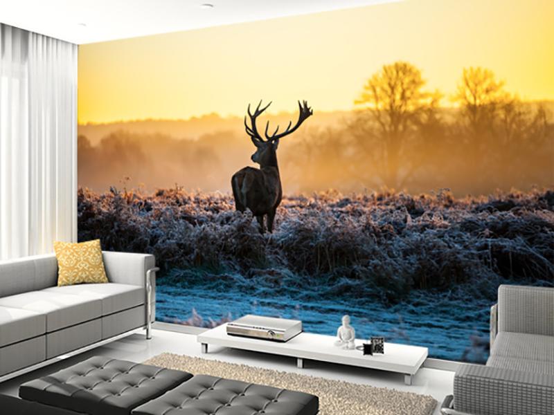 Eviniz için geyik duvar kağıdı