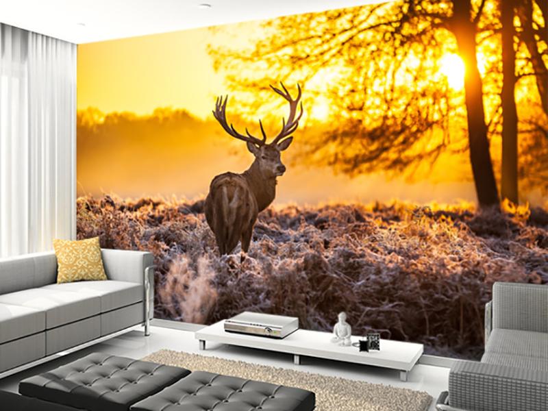 Eviniz için kızıl geyik duvar kağıdı