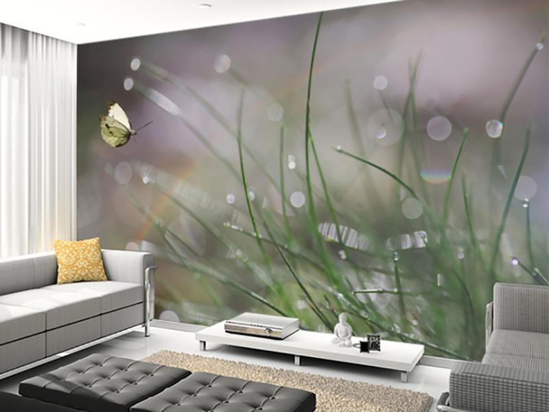 Eviniz için kelebek duvar kağıdı