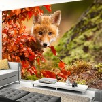 Eviniz için tilki duvar kağıdı