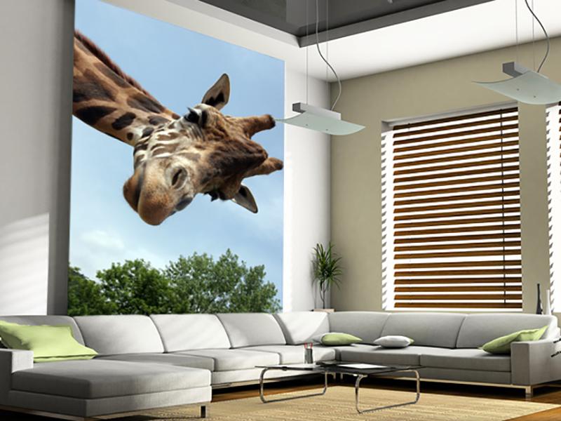 Eviniz için zürafa duvar kağıdı