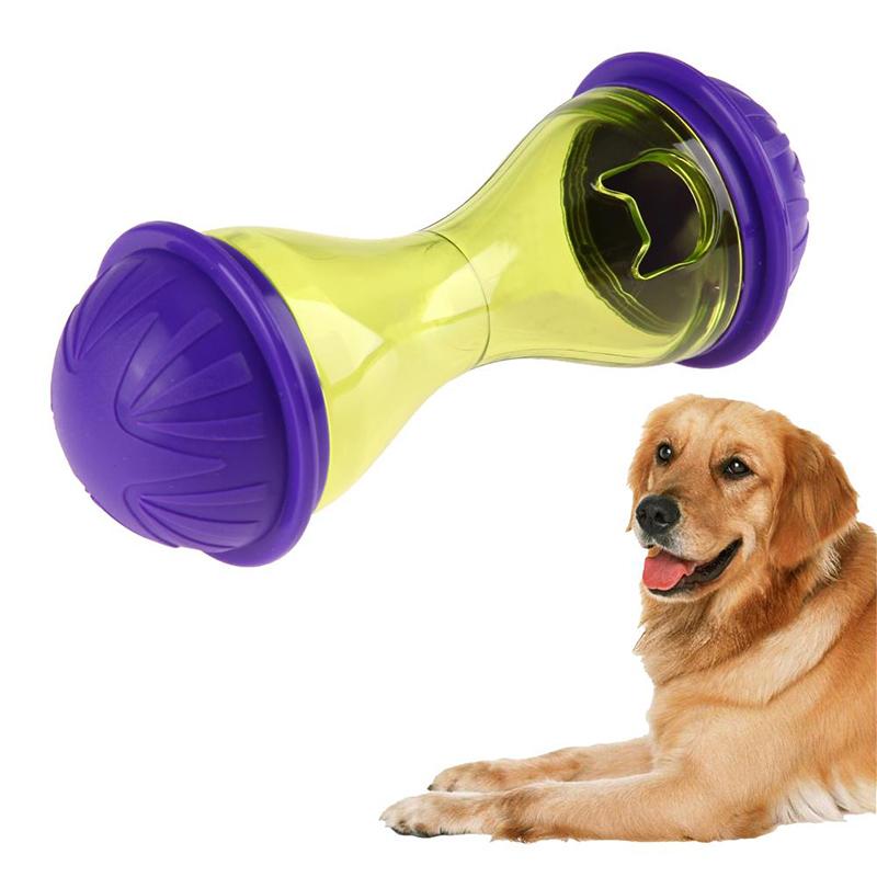 Evcil Hayvan Oyuncakları ve Yemek Kâseleri. Tuvaletten Daha Kirli 8 Şey