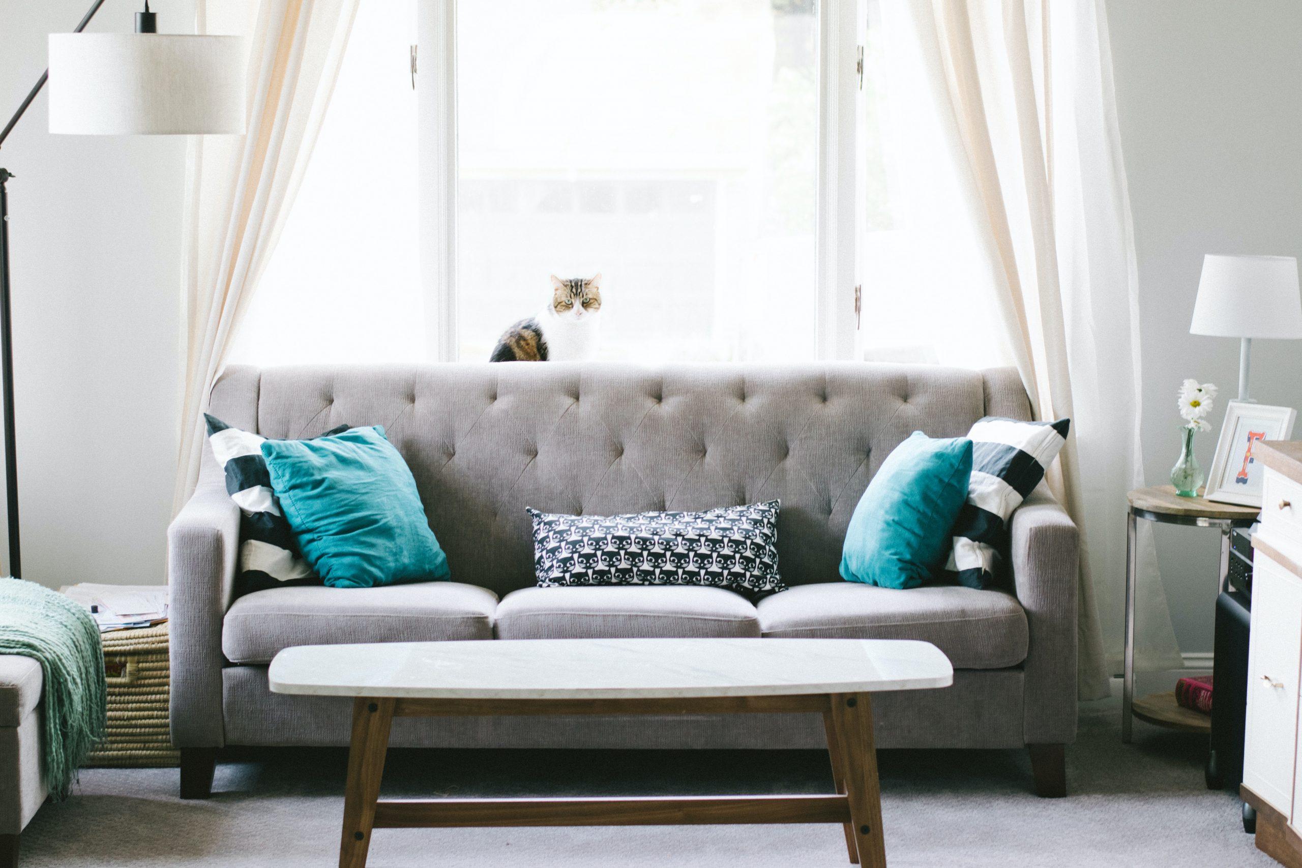 Alerjisi Olanlar İçin Oturma Odası Temizliği