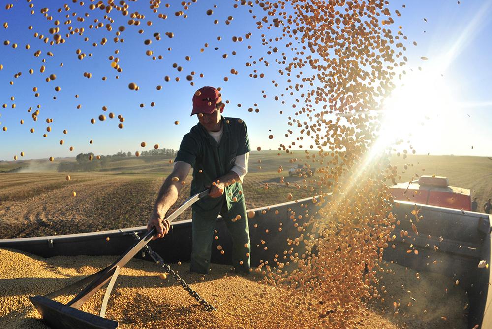 Hasat zamanı, sebze yetiştiricileri için kesinlikle en ödül dolu mevsimdir.