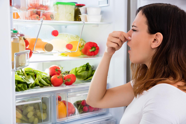Cihazı kokulu veya küflü yiyeceklerden arındırın; kutuları ve rafları bulaşık sabunuyla yıkayın, ünitenin havasını boşaltın ve buharlaştırıcı haznesini temizleyin. Yaygın Mutfak Sorunları ve Düzeltme Tavsiyeleri