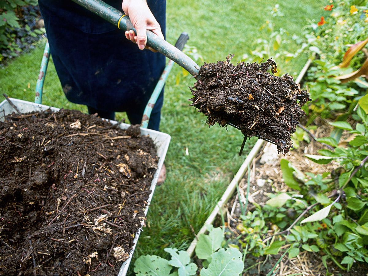 Henüz bir tane oluşturmadıysanız, Kendin Yap kompost yığını mükemmel getiri sağlayacak basit bir hafta sonu çabasıdır. Yaz Sonu Bahçede Yapılacak İşler Listesi