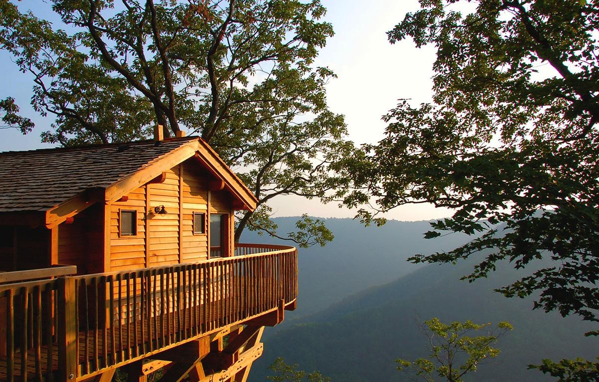 Primland Ağaç Evi (Meadows of Dan - Virginia)
