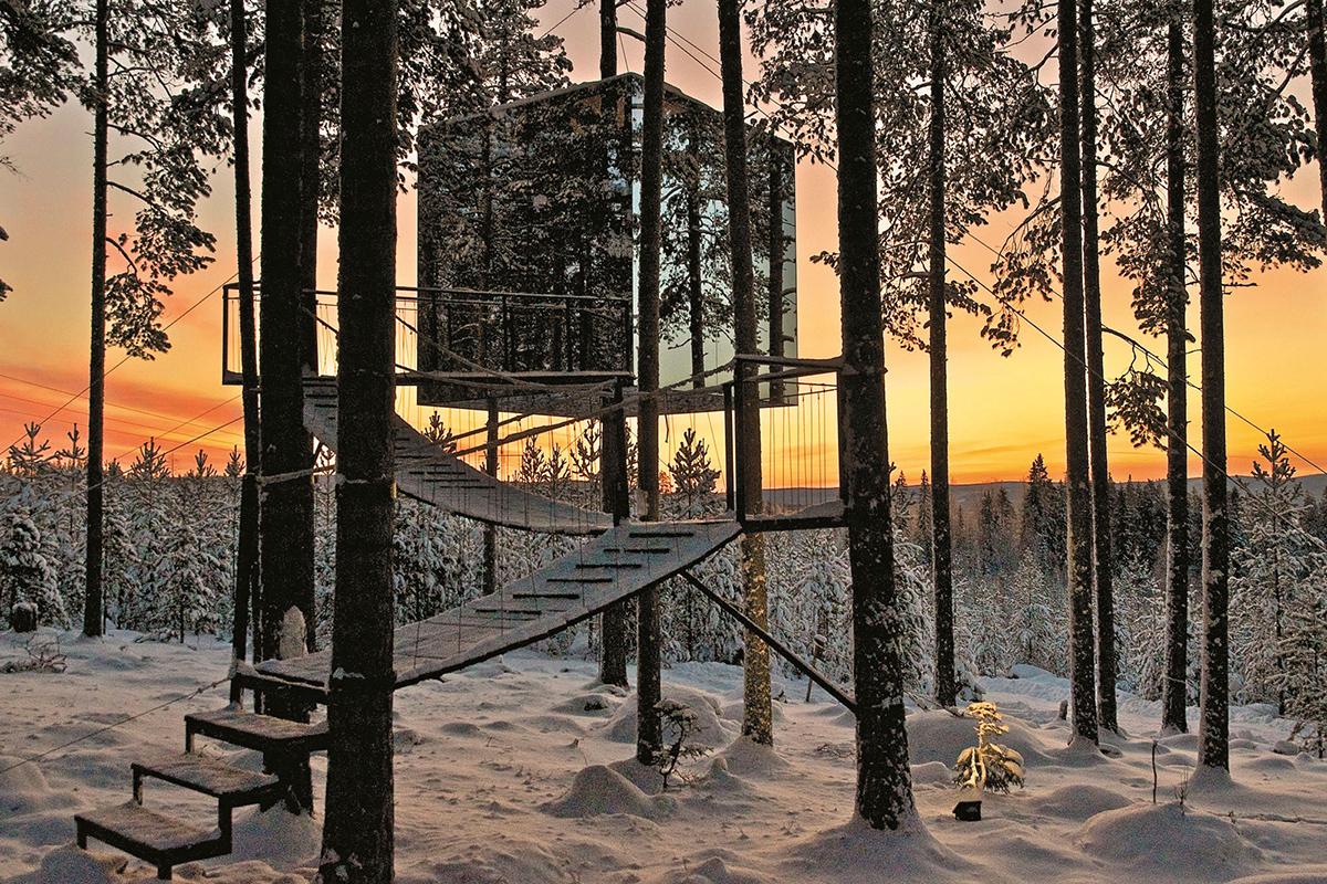 The Treehotel (Ağaç Otel) - Lulea - İsveç