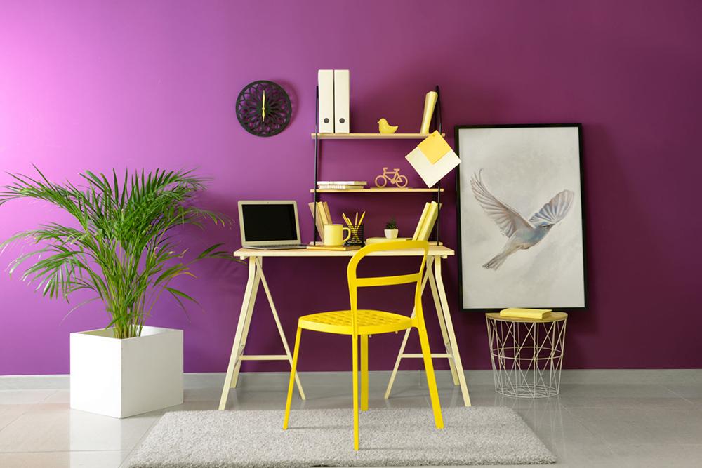 Mor Renk Ofis Duvarı